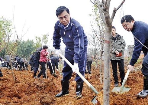 新余市组织开展机关干部新春义务植树活动