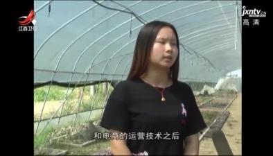 宜春:90後大學生癡情多肉植物 月入6萬元