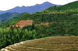 江西將重點扶持贛州167個深度貧困村(附名單)