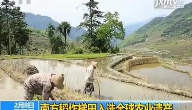 南方稻作梯田入選全球農業遺産