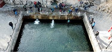 濟南:泉水叮咚迎新春