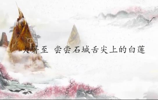 江西石城:大暑至 尝尝舌尖上的白莲