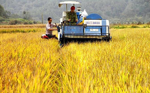 江西靖安:農機發展助豐收
