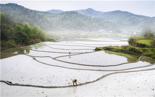 航拍江西廣昌赤水梯田 鳥瞰傳統農耕之美