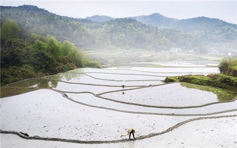 航拍江西廣昌:鳥瞰傳統農耕之美