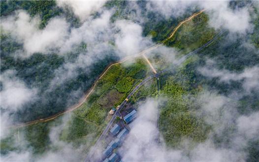 """航拍江西新余:""""四好農村路""""打造綠色生態特色"""