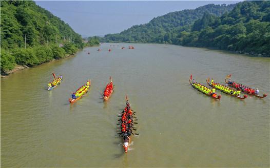 江西新余:千年傳統龍舟活水迎端午