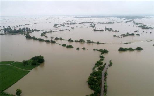江西撫州遭強降雨襲擊 搶險救援工作積極展開
