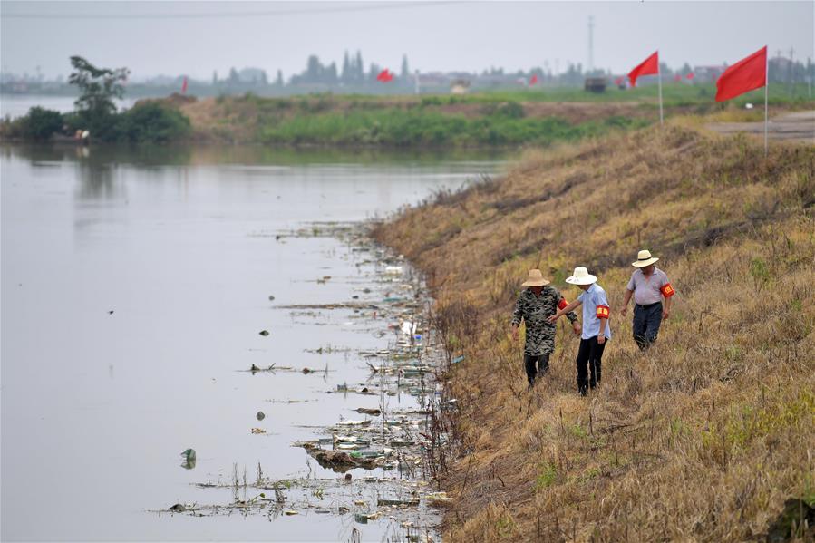 江西南昌:巡堤排險 安全度汛