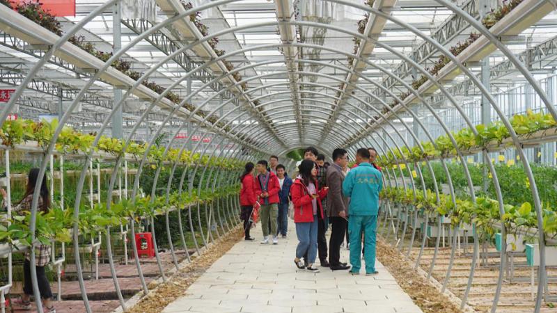 江西井岡山:現代農業助力鄉村振興