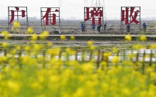 江西南昌:扶貧基地開工忙