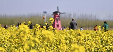 山東濟南:踏春賞花 親近自然