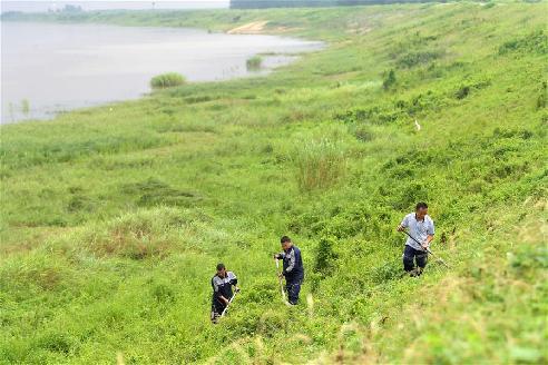 江西南昌:巡查排險 保障汛期安全