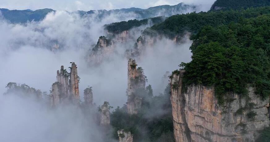 湖南張家界:雲起山峰間
