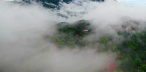 江西廬山:磅薄雲海入畫來